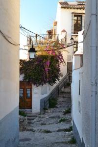 Smalle straat met Bourgainville