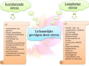 gevolgen stress